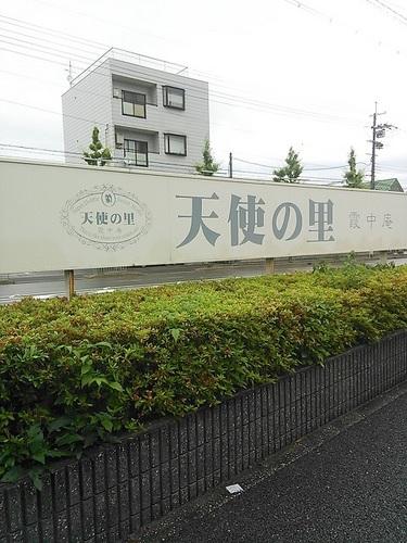NEC_4103.JPG